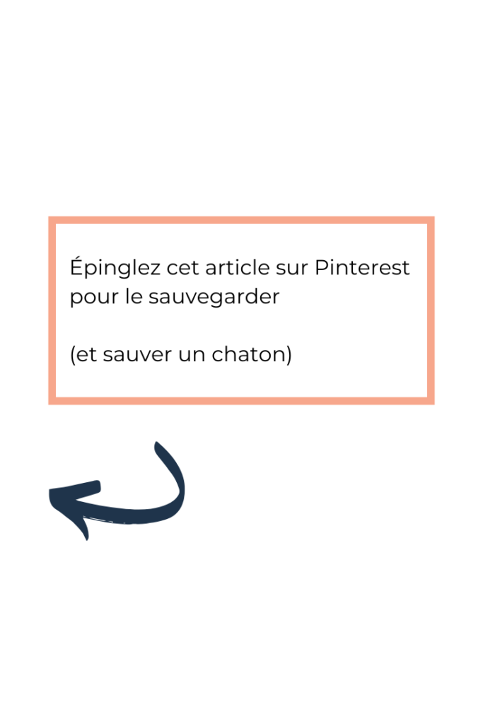épinglez pinterest article de blog TheBBoost